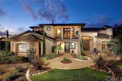 Encinitas Single Family Home For Sale: 512 Latigo Row
