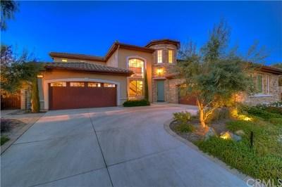 San Juan Capistrano Single Family Home For Sale: 29291 Via Zamora