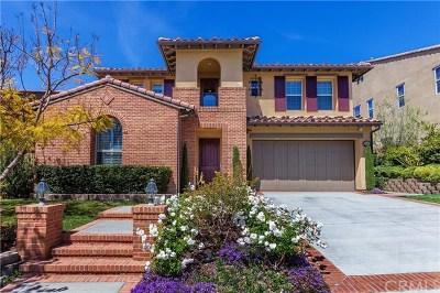 San Juan Capistrano Single Family Home For Sale: 26501 Via La Jolla