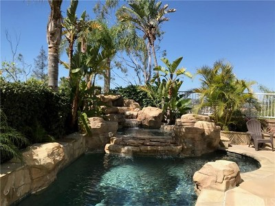 Rancho Santa Margarita Single Family Home For Sale: 21931 Via Del Lago