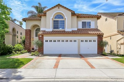 Mission Viejo Single Family Home For Sale: 20 Regalo Drive