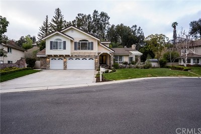 Laguna Hills Single Family Home For Sale: 27215 Stagewood Court
