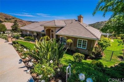 Westlake Village Single Family Home For Sale: 1984 Lake Sherwood Drive