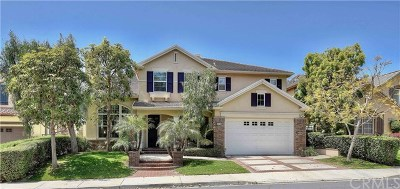 San Clemente Single Family Home For Sale: 412 Camino Vista Verde