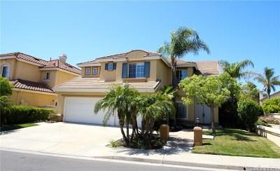 Irvine Single Family Home For Sale: 11 S Santa Teresita