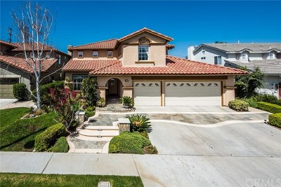 Mission Viejo Single Family Home For Sale: 24029 Skyline