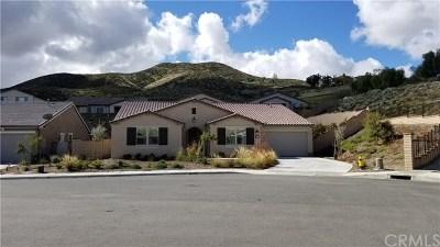 Menifee Single Family Home For Sale: 24047 Deputy Way