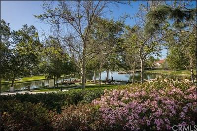 Rancho Santa Margarita Condo/Townhouse For Sale: 24 Celosia