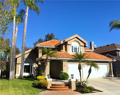 Laguna Niguel Single Family Home For Sale: 32 New Haven