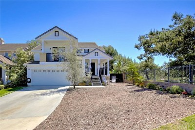 San Clemente Single Family Home For Sale: 6100 Camino Forestal