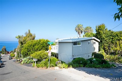 Laguna Beach Single Family Home For Sale: 31959 10th Avenue