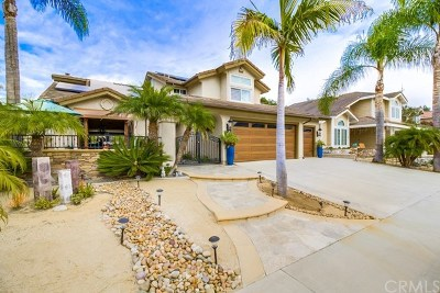 Dana Point Single Family Home For Sale: 24421 Philemon Drive