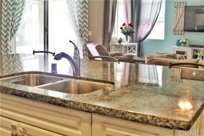 Lake Elsinore Single Family Home For Sale: 29515 Slider