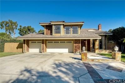 San Juan Capistrano Single Family Home For Sale: 31461 Paseo Duran