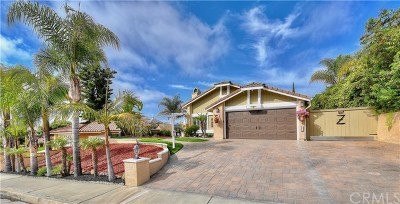 San Clemente Single Family Home For Sale: 2839 Campo Raso