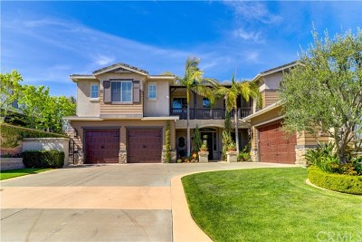 Orange County, Riverside County Single Family Home For Sale: 29091 Bouquet Canyon Road