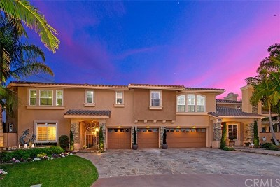 Huntington Beach Single Family Home For Sale: 18975 Rockinghorse Lane