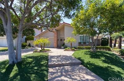Lake Forest Single Family Home For Sale: 24792 Camino Villa