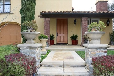 Newport Coast Single Family Home For Sale: 10 Shadowcast