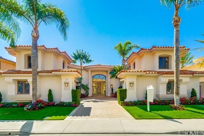 Laguna Niguel Single Family Home For Sale: 17 Vista Montemar