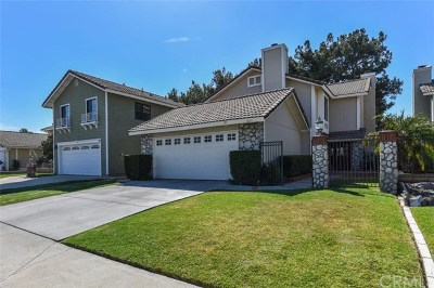 Placentia Single Family Home For Sale: 1031 Holt Drive