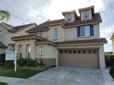 Mission Viejo Single Family Home For Sale: 31 Goldbriar Way