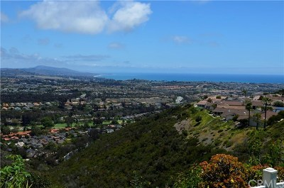 Laguna Niguel Single Family Home For Sale: 31358 Flying Cloud Drive