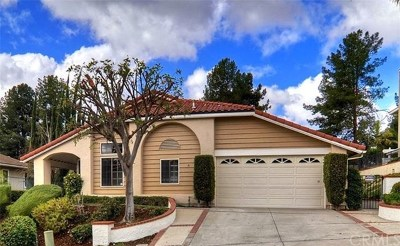 Laguna Hills Single Family Home For Sale: 24511 Mandeville Drive