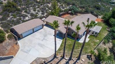 Murrieta Single Family Home For Sale: 40150 Avenida Del Tiendas