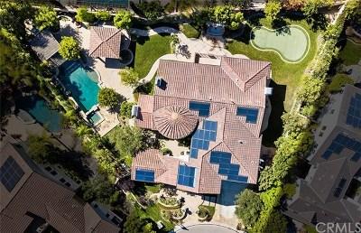Laguna Hills Single Family Home For Sale: 25051 Farrier Circle