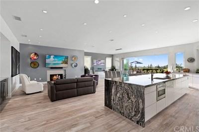 Irvine Single Family Home For Sale: 18751 Via San Marco