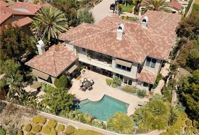 San Juan Capistrano Single Family Home For Sale: 26111 Calle Cobblestone