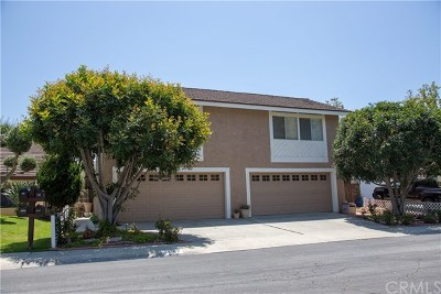 San Juan Capistrano Single Family Home For Sale: 28102 Paseo Azteca