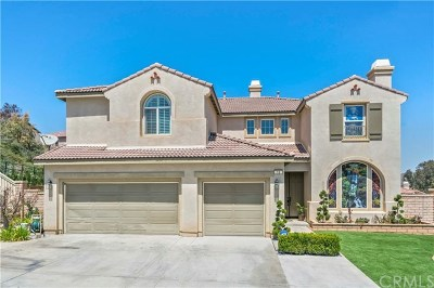 Lake Elsinore Single Family Home For Sale