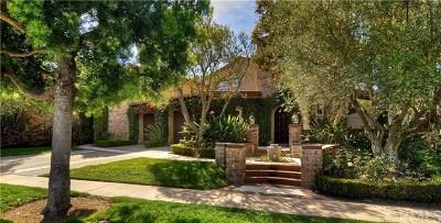 Newport Coast Single Family Home For Sale: 21 Castellina Drive