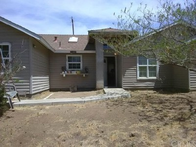 Menifee Single Family Home Active Under Contract: 24025 Acacia Street