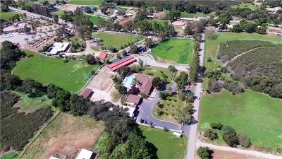 San Juan Capistrano Single Family Home For Sale: 11005 Fox Springs Road