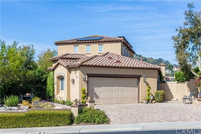 Coto de Caza Single Family Home For Sale: 31 Constellation Way
