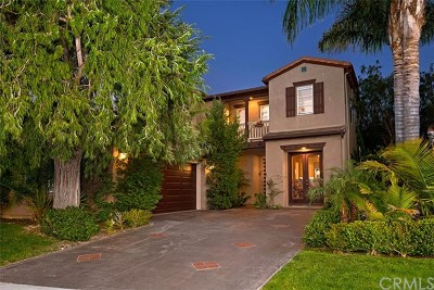 San Clemente Single Family Home For Sale: 13 Via Palacio