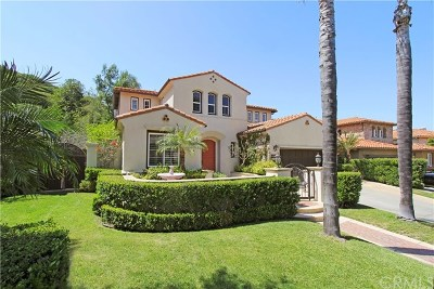 San Juan Capistrano Single Family Home For Sale: 28342 Via Mondano