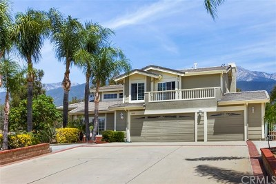 Alta Loma Single Family Home For Sale: 10118 Woodridge Drive