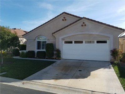 Murrieta Single Family Home For Sale: 24171 Via Llano