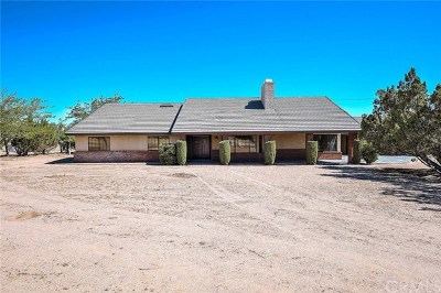 Hesperia Single Family Home For Sale: 14634 Muscatel Street