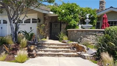 Dana Point Single Family Home For Sale: 22881 Via San Remo