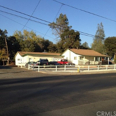 Clearlake Single Family Home For Sale: 14200 Olympic Drive
