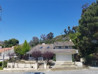 San Juan Capistrano Single Family Home For Sale: 33721 Calle Miramar