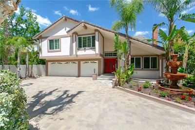 Anaheim Hills Single Family Home For Sale: 6425 E Shady Valley Lane
