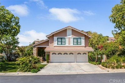 Orange Single Family Home For Sale: 6829 E Cowan Canyon Circle