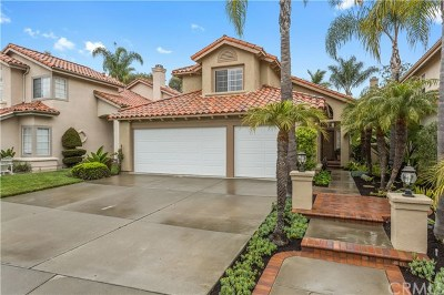 Laguna Niguel Single Family Home For Sale: 15 Aleria
