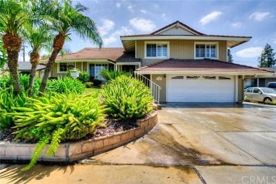Brea Single Family Home For Sale: 1142 Delay Street